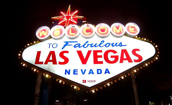 Las Vegas Bus Tour