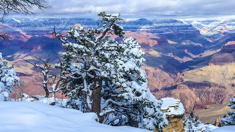 Grand Canyon Walking Tours Provide Bus Travelers with a Great Way to See the Canyon