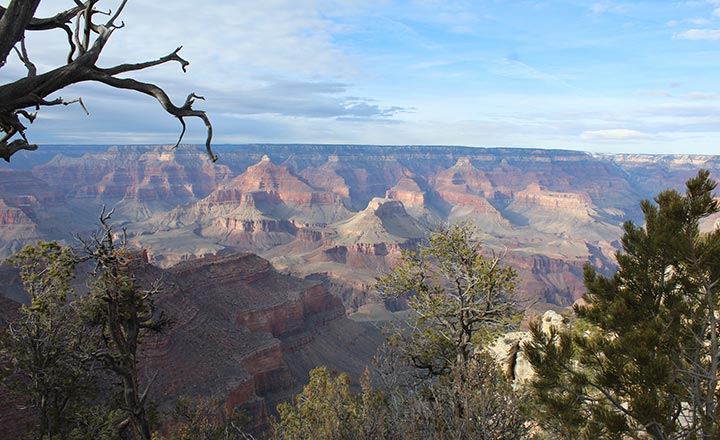 The Grand Canyon National Park view into the canyon.
