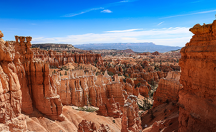Bryce and Zion offer expansive views from overlooks.