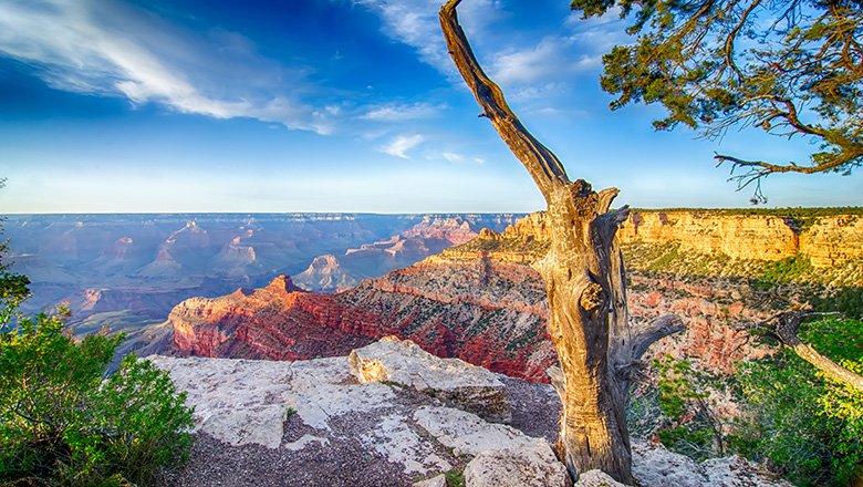 The South Rim of the Grand Canyon at sunrise seen on a bus to Grand Canyon tour.
